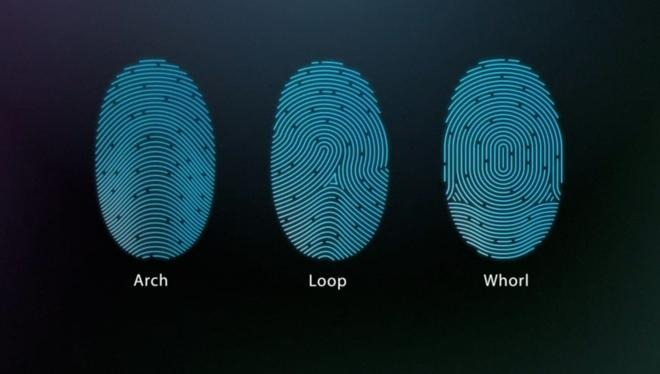 Your fingerprints are turned into numeric strings and encrypted for storage in the Secure Enclave