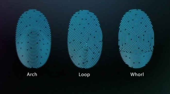 Your fingerprints are turned into numeric strings and stored in the Secure Enclave using encryption