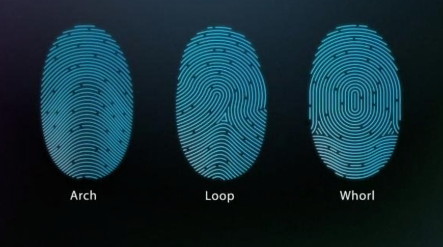 The Secure Enclave handles biometrics