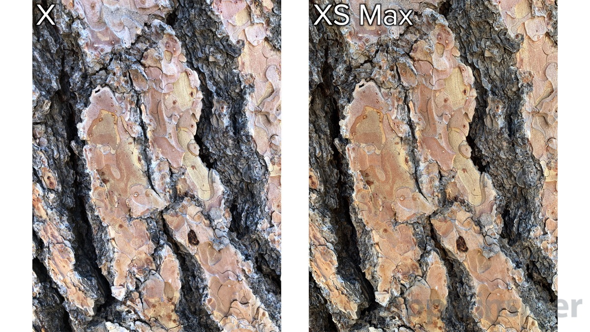 iphone xs tree detail comparison