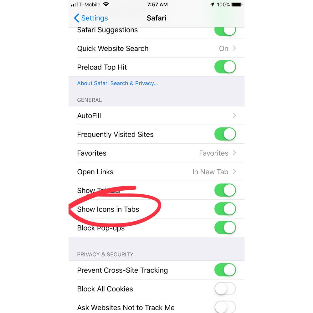 iOS 12 Safari settings