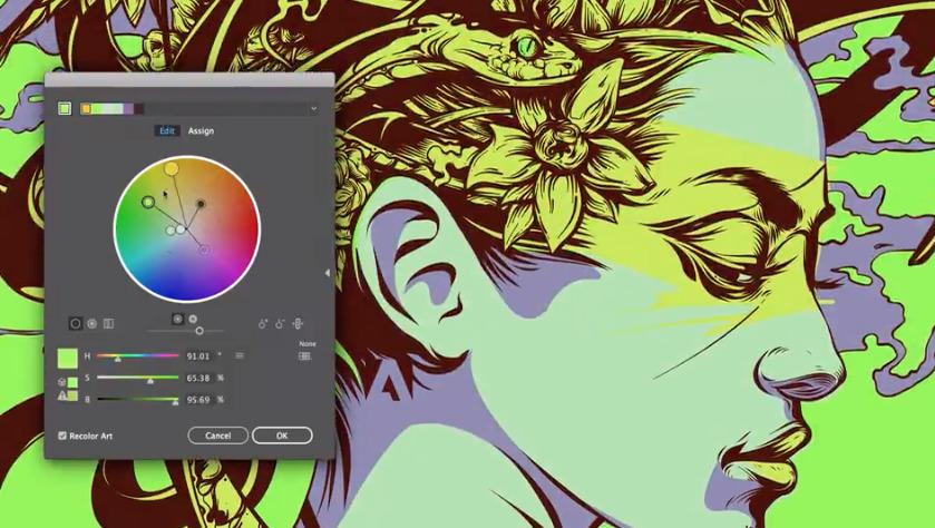 Adobe Illustrator in the Creative Cloud suite