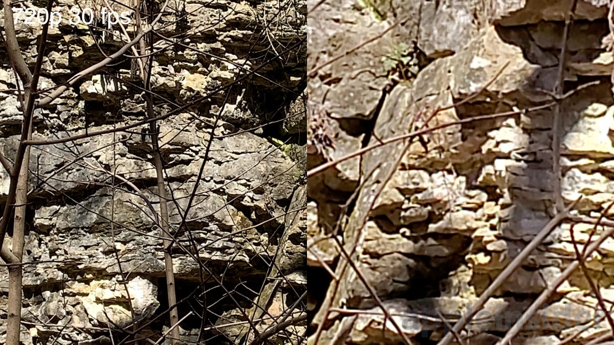 iPhone XR digital zoom max sample (left) and S10e (right)