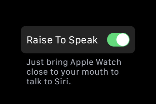 Isnt It Pity Real Problem With Special >> How To Make The Apple Watch Raise To Speak Feature Work