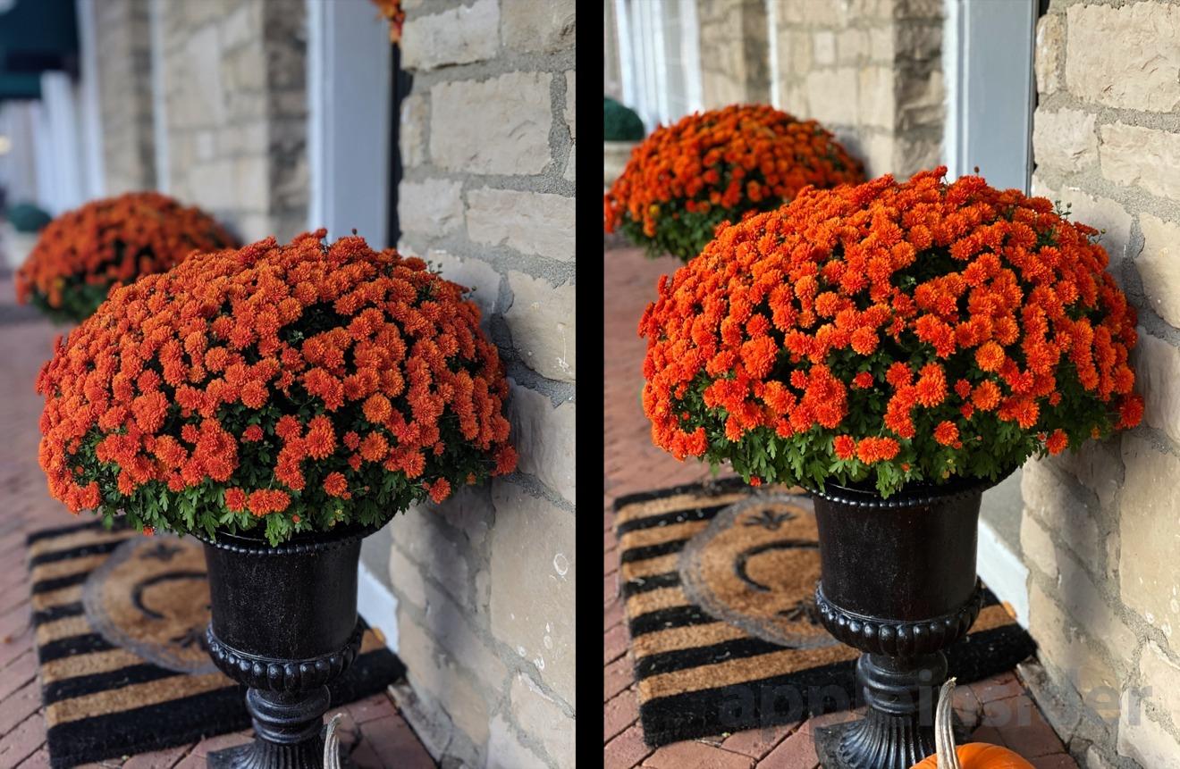 Pixel 4 (left) vs iPhone 11 Pro (right) using Portrait mode