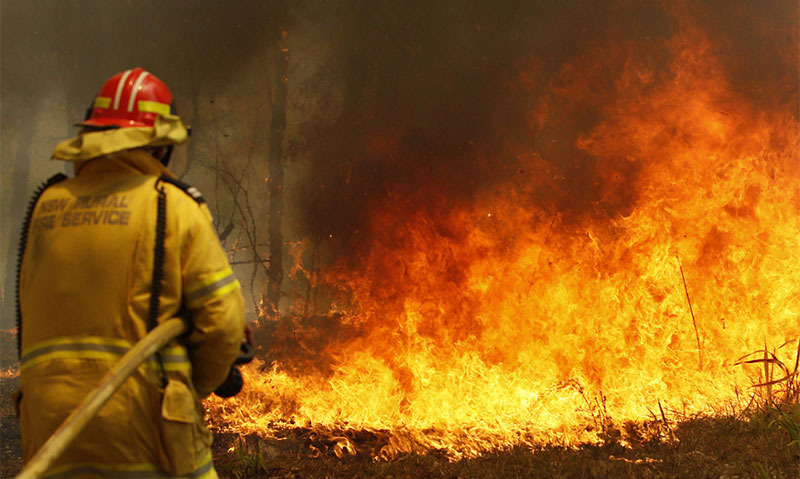 Apple to donate to Australian bush fire relief efforts