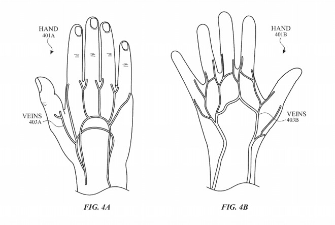 Hands have veins that flow into and around joints.