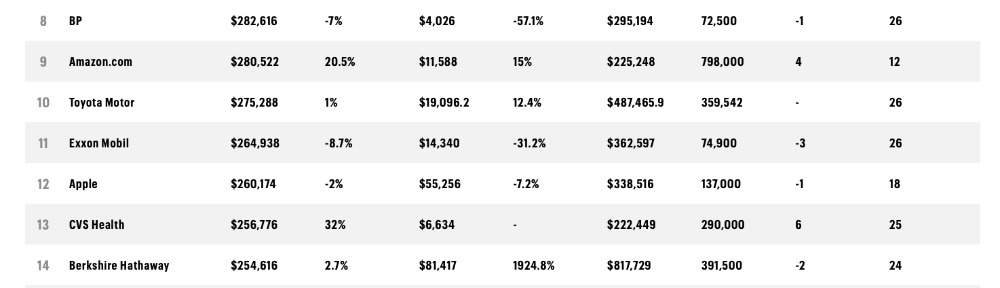 Extract from the 500 list showing Amazon and Apple's relative positions