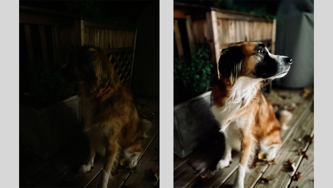 iPhone 11 Pro low-light portrait shot versus night mode portrait on iPhone 12 Pro