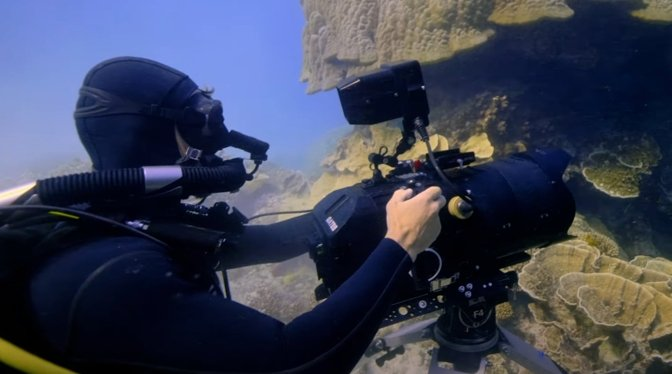 photo of Apple TV+ 'Tiny World' filmmakers used gas-retaining diving gear for underwater shots image