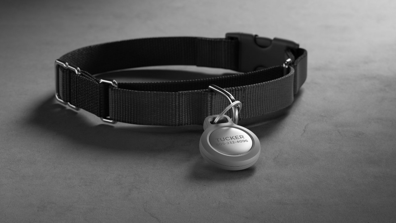 The optional metal insert can act as a pet ID for a collar