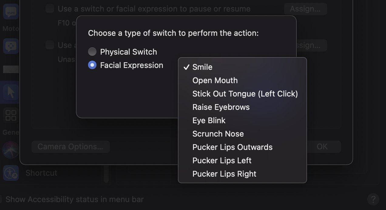 There is a pretty long list of facial expressions that Head Pointer can detect.
