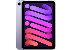 iPad mini 6 in Purple